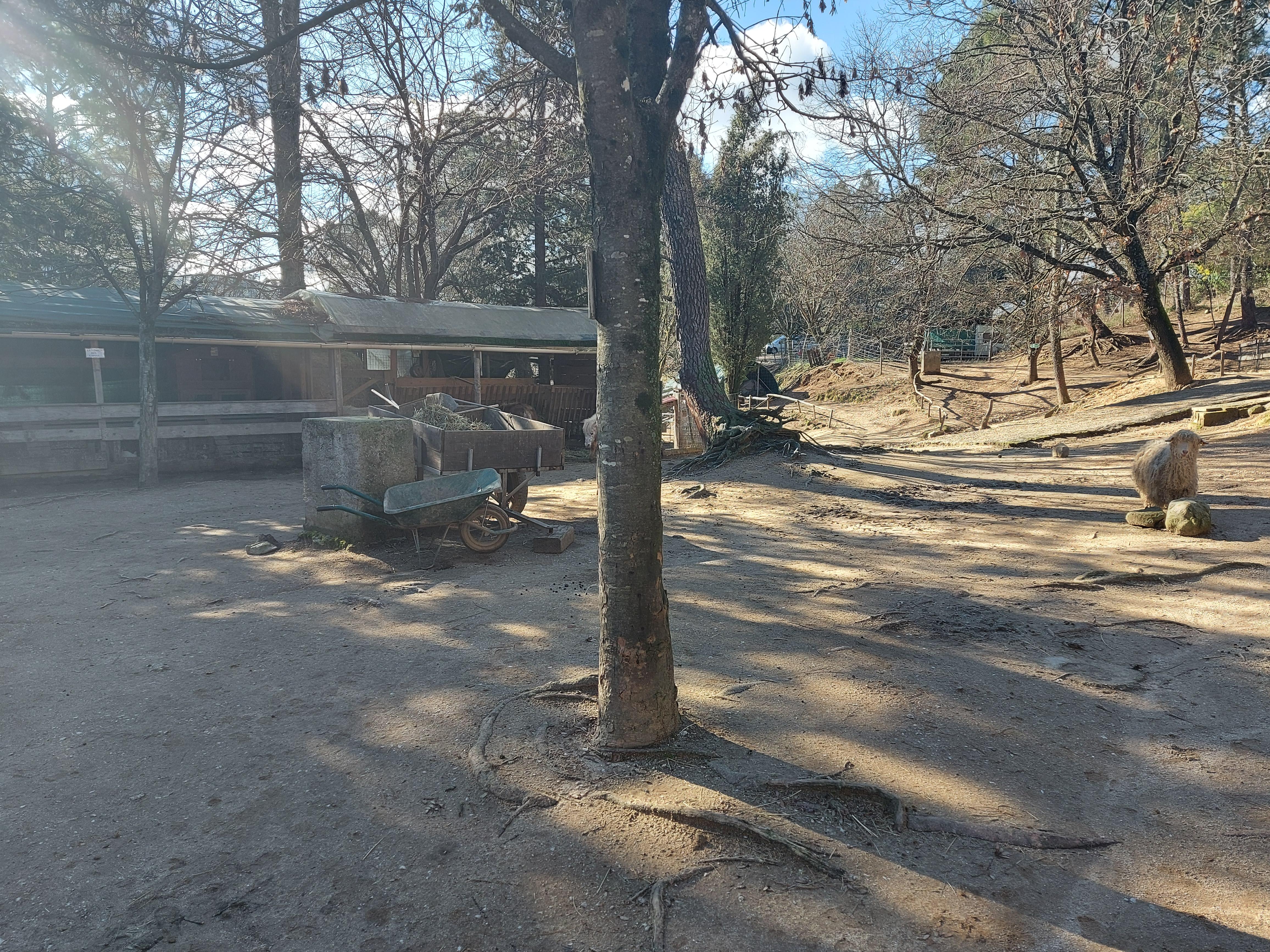 visite du jardin animalier deMialet